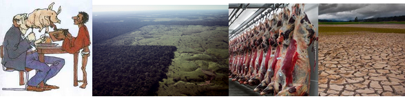 invloed vleesproductie.PNG